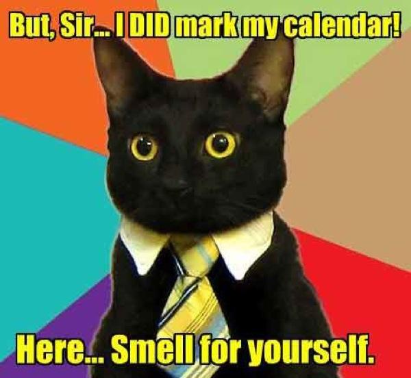gcal SEO calendar