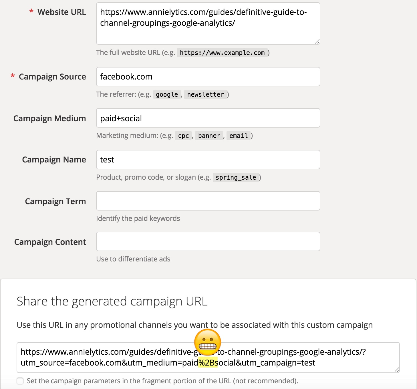 Google's URL Builder campaign tagging issue